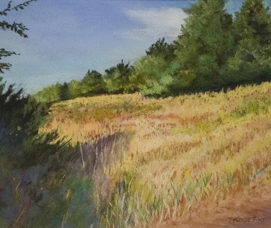 TERRI KNOETTNE, Bare Hill Sanctuary, Pastel, 9.5 x 11.5 inche, $375
