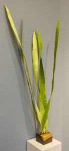 NATALIE SHUDT, New Shoots; Silk, steel, wood; 38 x 8 inches; $700