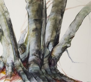 SUSAN MAXFIELD, Beech Trunks, Mixed media on gessoed paper, 9 x 10 inches, $900