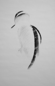 JANE McKINNON JOHNSTONE, Woodpecker, Charcoal drawing, 21 x 14 inches, $300