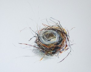 SUSAN MAXFIELD, Small Nest with Horsehair, Watercolor, ink, gouache; 7 x 9 inches, $400