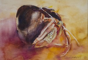 D'ANN BROWNRIGG, Crabby, Watercolor; 11 x 14 inches, $350