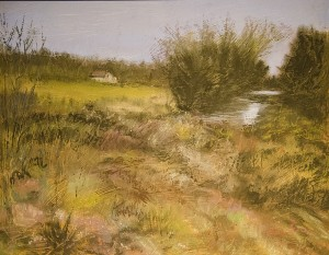 PAULA FRASER, Grasses, Pastel; 11 x 14 inches, $700