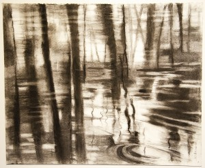 Gillian Frazier	 Swamp Reflection #1	 Charcoal; 17 x 21 inches