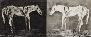 Judith Schutzman	 Narcissus Charcoal monoprint & ghost; 12 x 27 inches