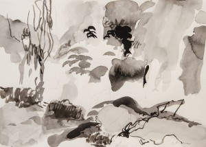 Sandys Moore, Oriental Garden II Sumi ink on paper; 13 x 17 inches