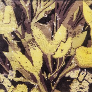 Cathy Garnett	 Kelp Reduction woodcut; 12 x 12 inches