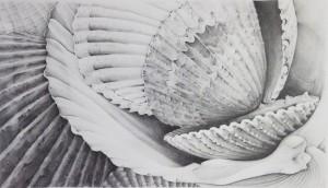 HELENE WILDI Jasper Graphite on paper, 16 x 28 inches $2000